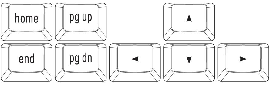Nav Key Cluster